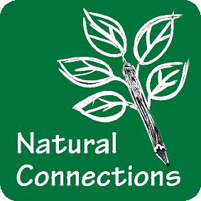 NC-Logo-APP-1